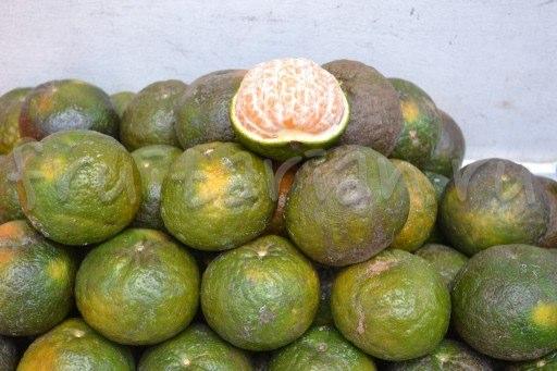 филиппинские мандарины