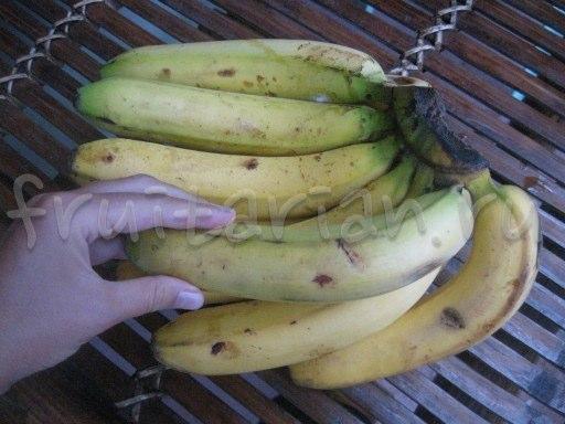 бананы Lacatan