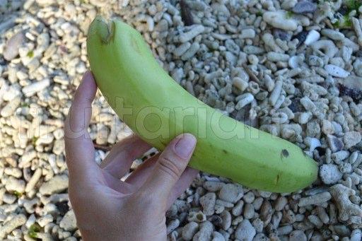 зеленый банан
