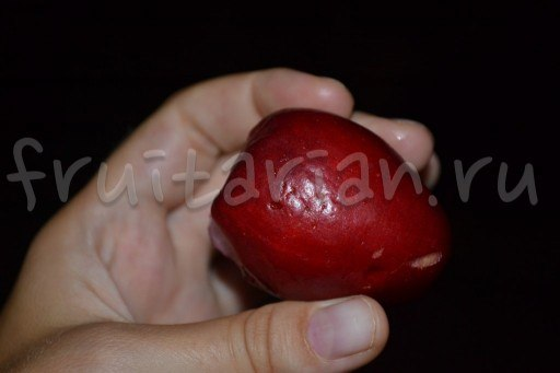 филиппинский фрукт