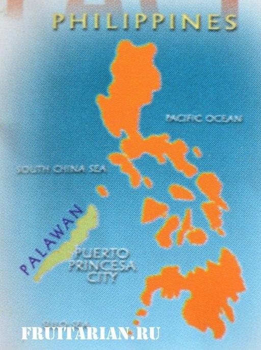 карта палавана и филиппин