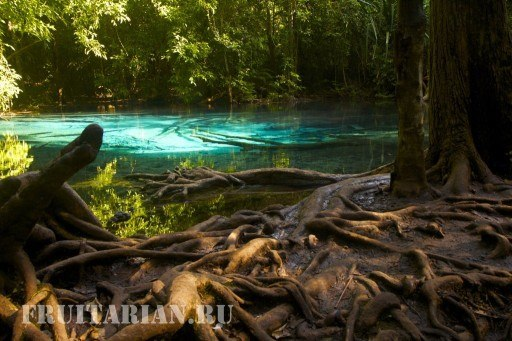 blue-pool-krabi10