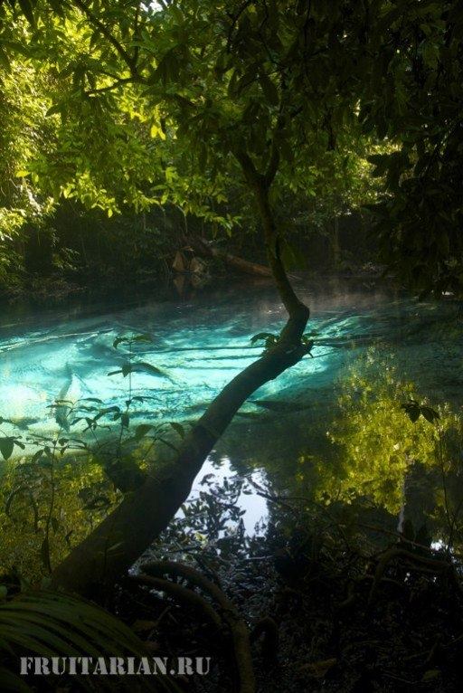 blue-pool-krabi14