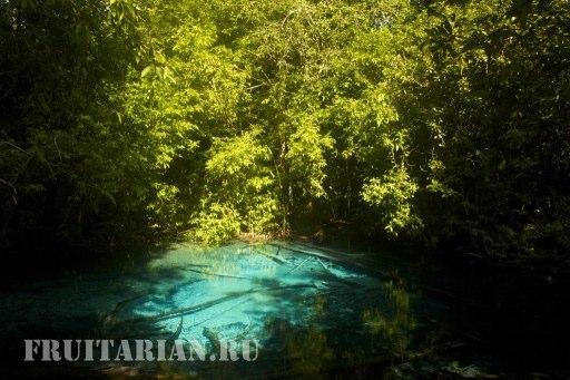 blue-pool-krabi16