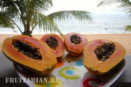 gavajskaja-papajja-07