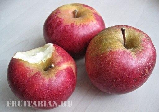 frukty-afrodiziaki-10