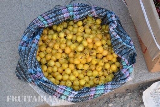 frukty-v-krymu-37