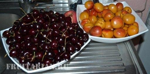 ohlazhdajushhie-frukty
