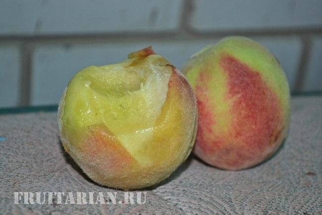 http://fruitarian.ru/wp-content/uploads/2013/08/7persik5.jpg
