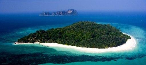 8bamboo-island1