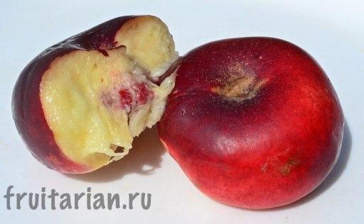 nektarin-inzhirnyj