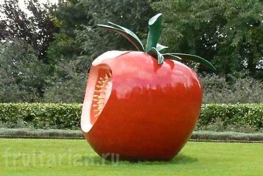 pamjatnik-pomidoru3