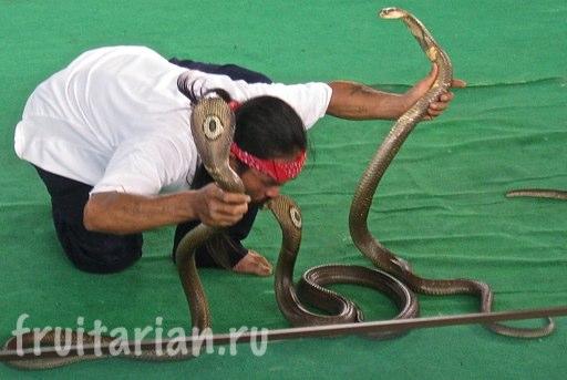 Pattaya_2010_0397