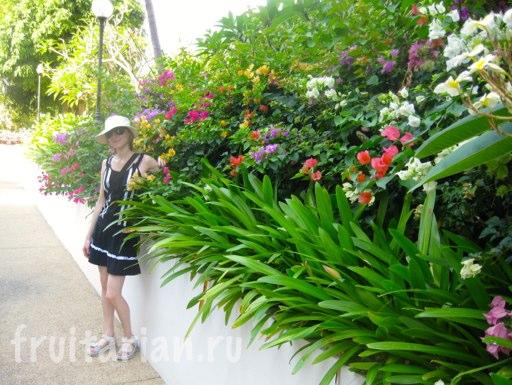 Pattaya_2010_0520