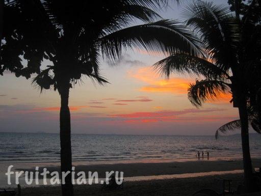 Pattaya_2010_0649