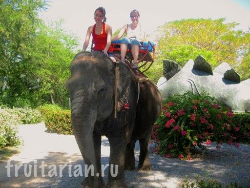 Pattaya_2010_0685