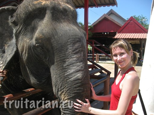 Pattaya_2010_0689