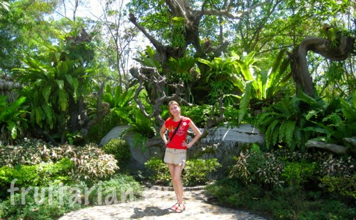 Pattaya_2010_0866