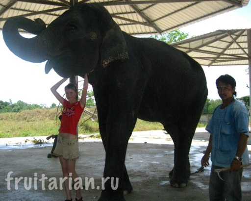 Pattaya_2010_0902