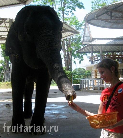 Pattaya_2010_0910