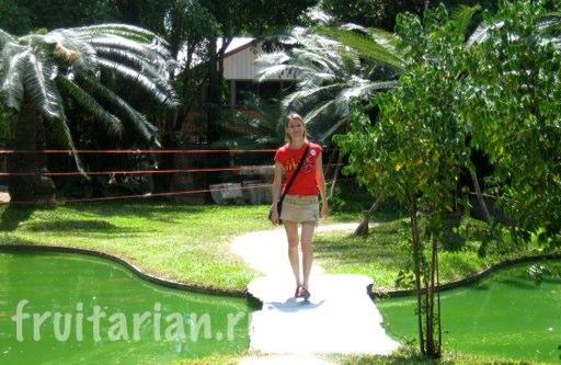 Pattaya_2010_0924