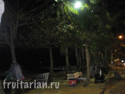 Pattaya_2010_1059