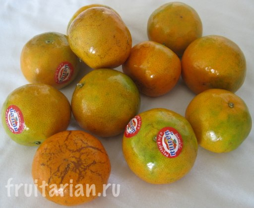 Pattaya_2010_1085
