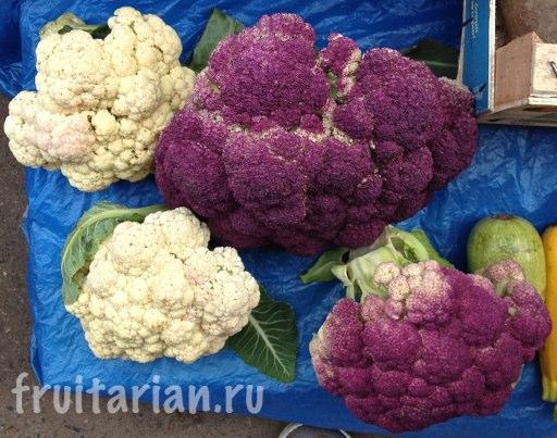 fioletovaja-cvetnaja-kapusta