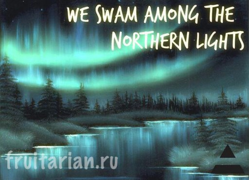 we-swam-among-the-NORTHERN-LIGHTS
