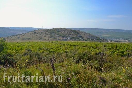 Balaklava-sevastopol-kym-22