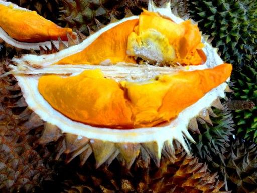 durian-sumatra