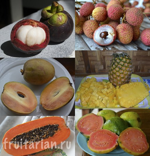 fruits-i-miss