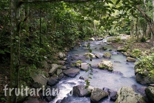 Pria-Laot-Waterfall-weh-pulau-19