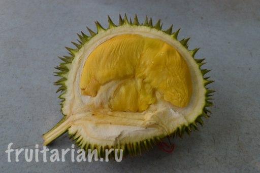 durian-malaysia