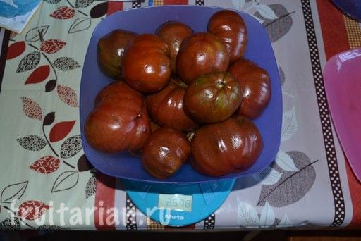 pomidory-v-krymu
