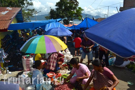 Tomok-fruit-market-saturday-Toba-1