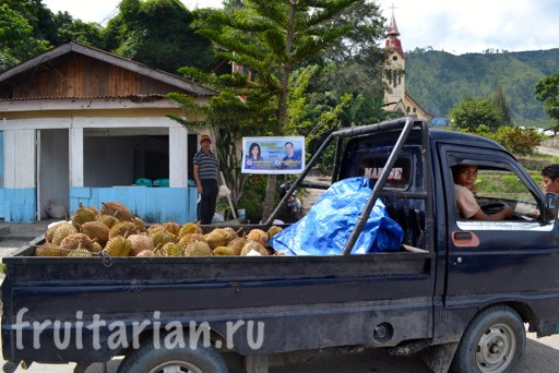 Tomok-fruit-market-saturday-Toba-6
