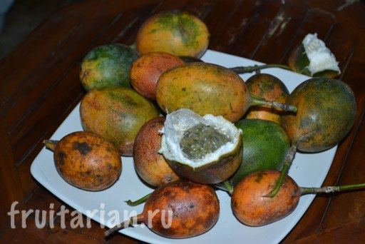 markiza-passion-fruit
