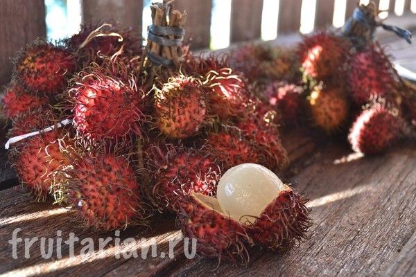 rambutan-indonezija