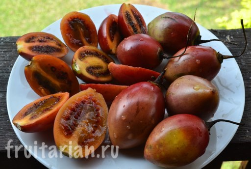tamarillo-indonezija