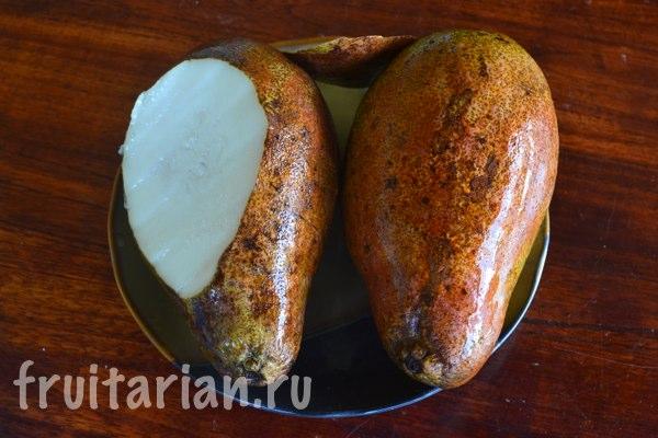 beloe-mango-white-wani-12