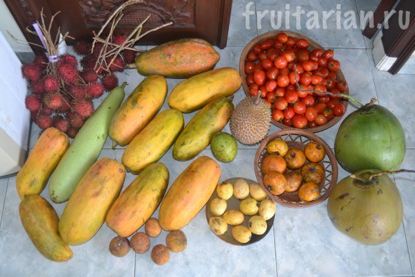 fruits-raw-diet