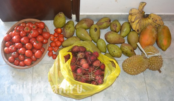 fruits-indonesia-1march2014