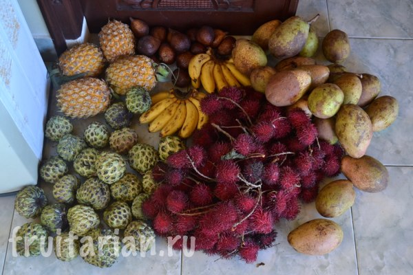 fruits-lombok-fruitarian