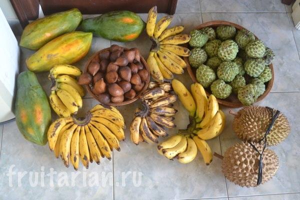 not-season-lombok