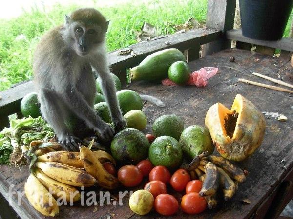weight-fruit