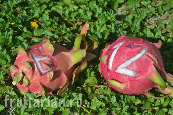 b12-fruitarian-ru