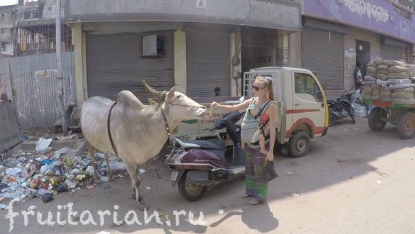 Chennai-india-01