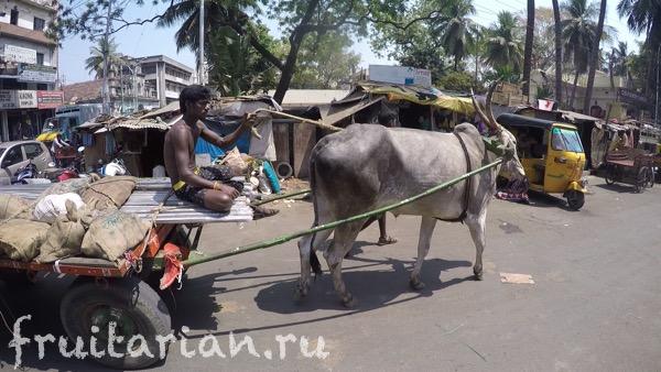 Chennai-india-09