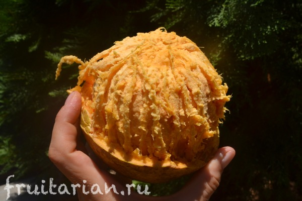 bael-stone-apple-03
